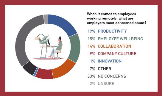 Remote Working Concerns